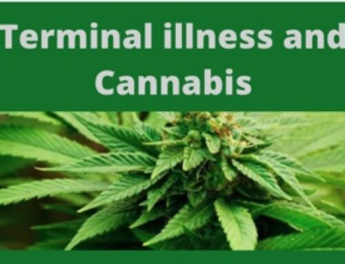 Terminal Illness and Cannabis
